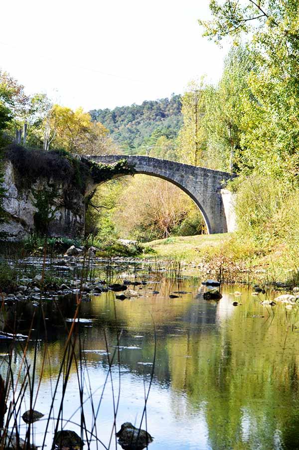 puente-vertical