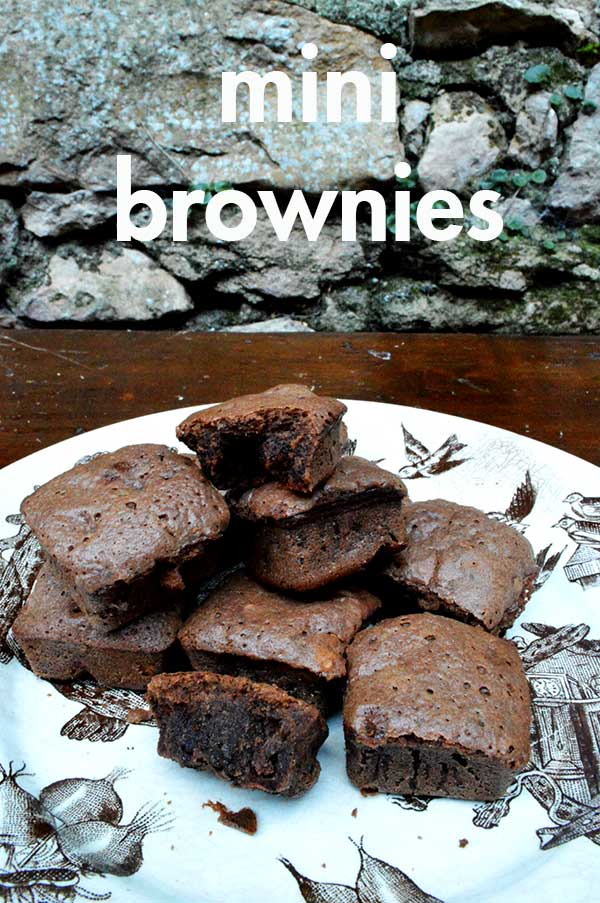 brownie-portada