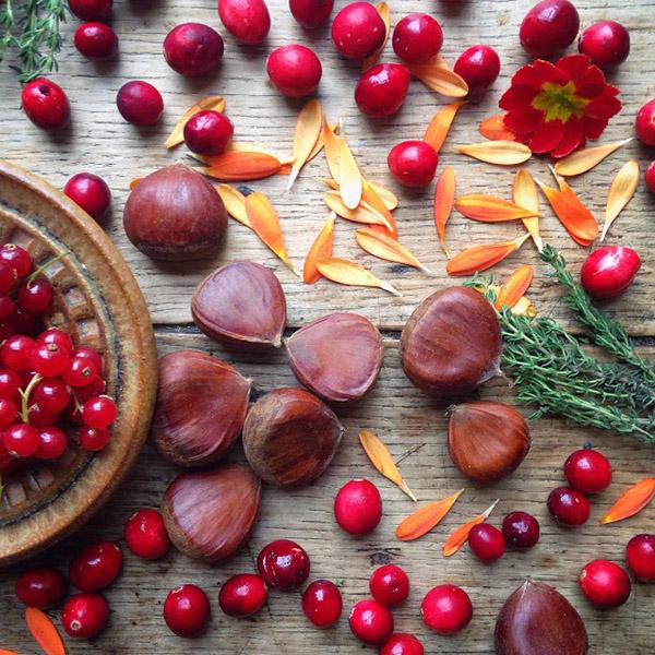 AllYourSites-Frutos Rojos-1
