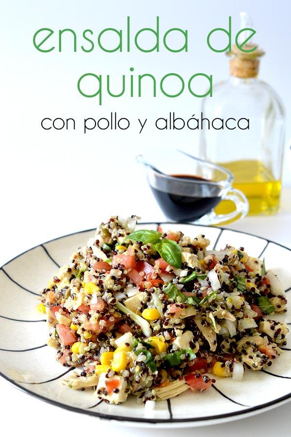quinoa-con-pollo-y-albahaca-25